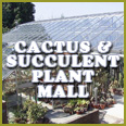 The Cactus and Succulent Plant Mall The biggest collection of plant oriented links on the Web!