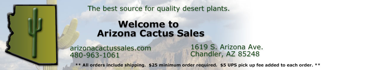 Arizona Cactus Sales